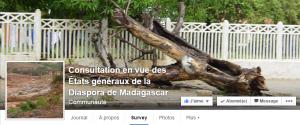 La consultation de la diaspora malgache est à portée de clics : sur Facebook